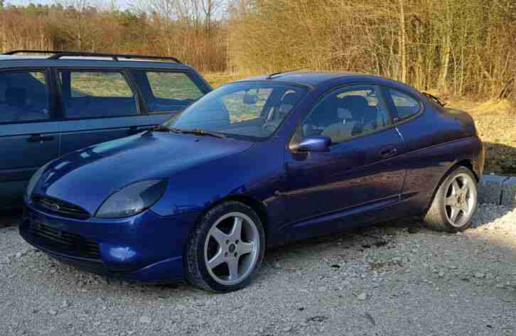 Ford Puma Schlachtfest