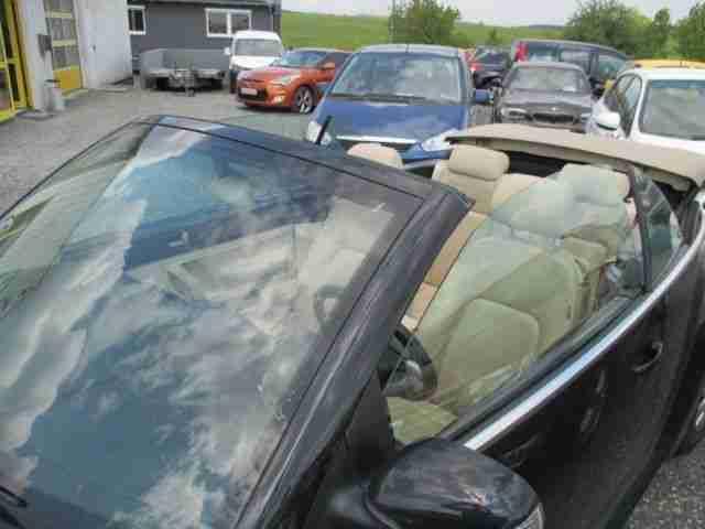 volkswagen new beetle cabrio leder elek neue positionen volkswagen pkw. Black Bedroom Furniture Sets. Home Design Ideas
